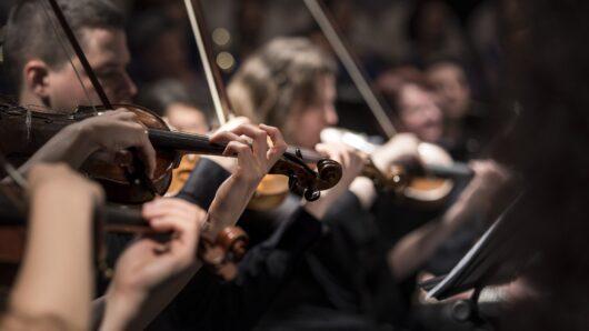 Entidades Culturales Paneuropeas (orquestas)