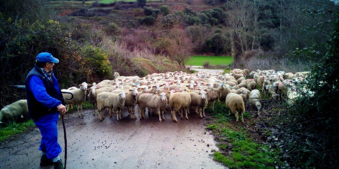 Jornada «Oportunidades para el Medio Rural»